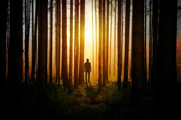 Het evangelie als Gods contra-complottheorie